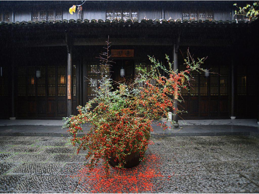 .杭州安縵法雲 冬季花藝