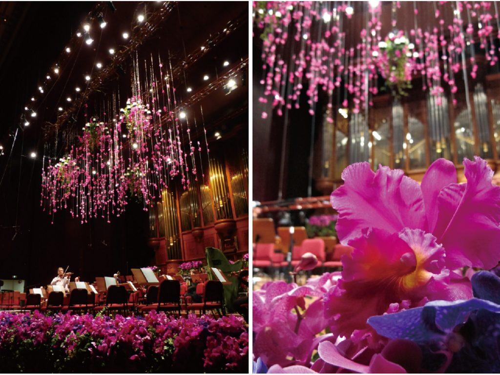 .柏林愛樂 國家音樂廳 花藝設計