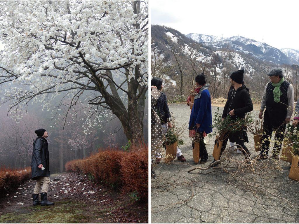 .跟著花開去旅行 日本金澤