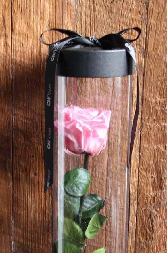 A12BXFF48玫瑰宣言-粉紅1480-3