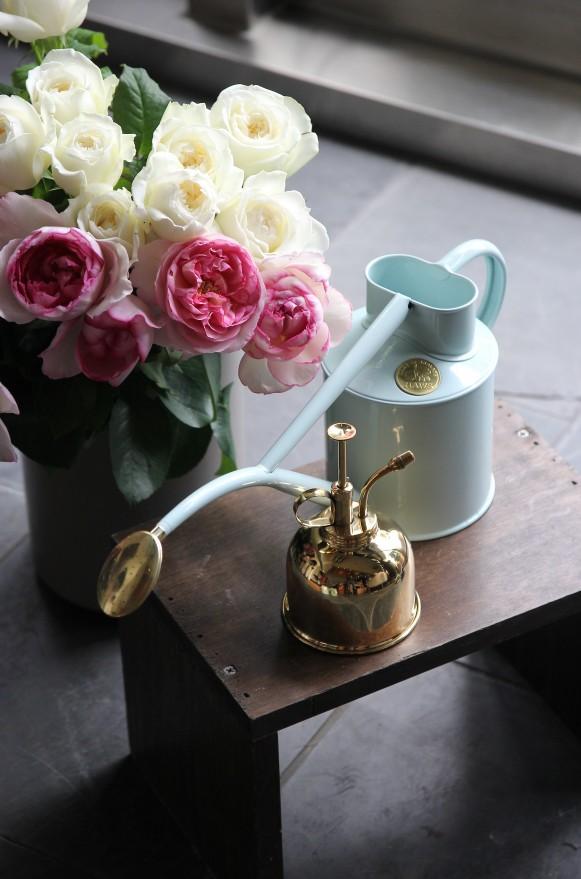 室內澆水壺1公升鴨蛋藍 (1)