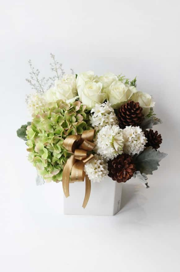 A10POWG01-白金耶誕盆花--4000-4