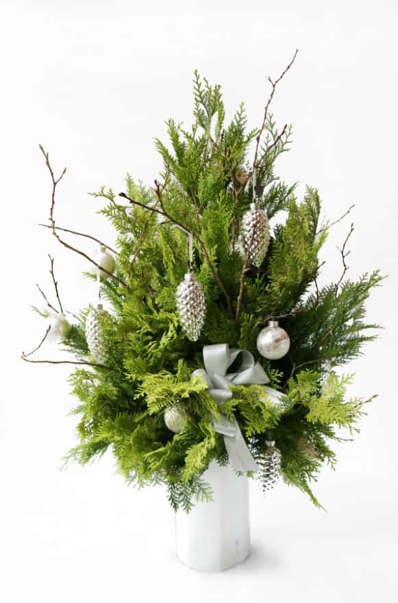 A10XM1730銀綠聖誕楠柏盆花3800 (5)