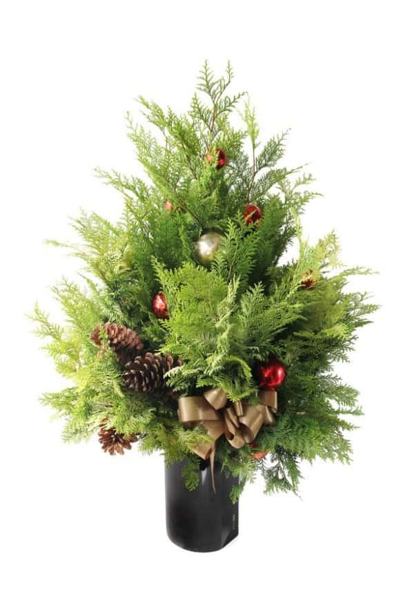 A10XM1730-1金紅聖誕-楠柏盆花3800-1 (3)