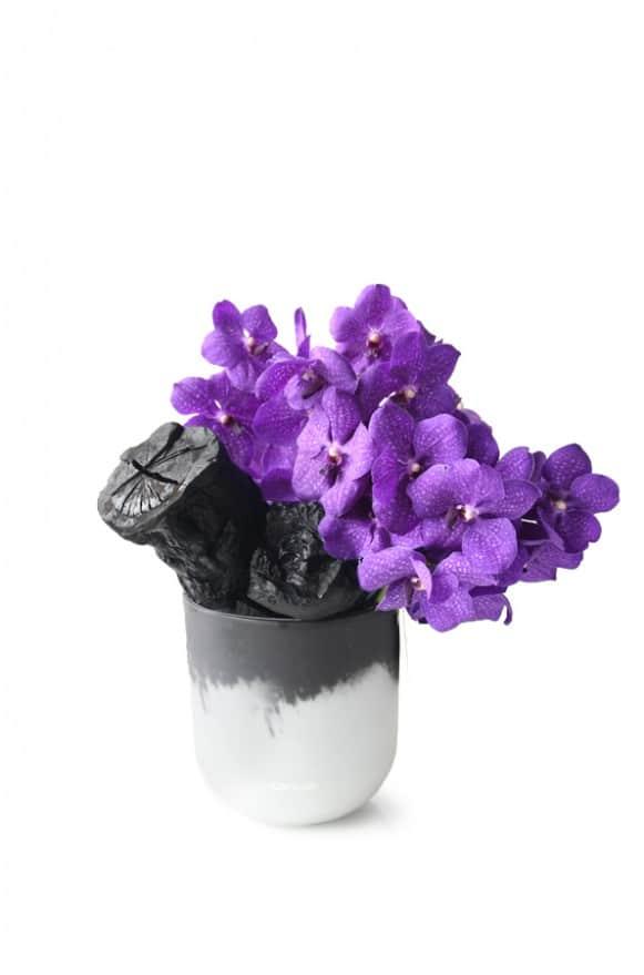 A10CY1818風華萬代--紫貴5500-4