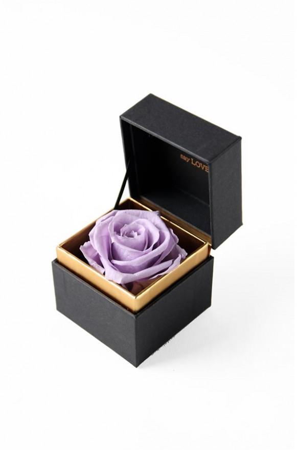 A12BXFF55SL戒盒紫丁香480
