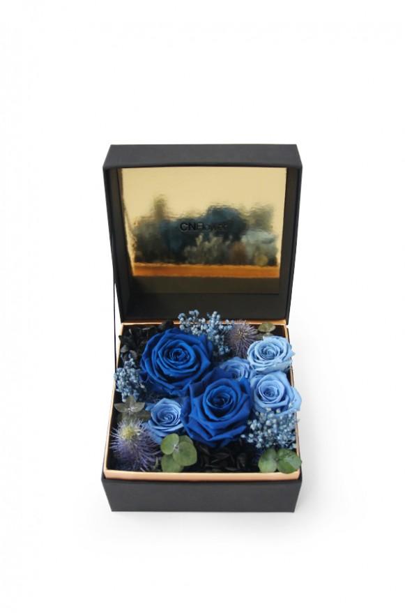 A12BXFF65-1珠寶盒花園_藍夜星空_2500(1)