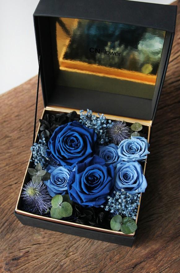 A12BXFF65-1珠寶盒花園_藍夜星空_2500(4)