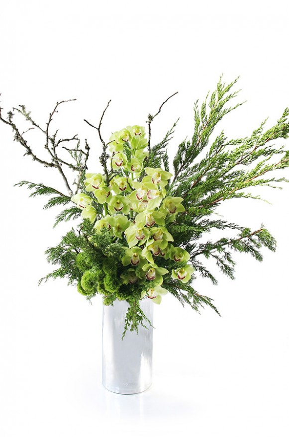 A02GLGG06青山亞蘭大型盆花12000 (7)