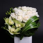 A01POWG01CN經典白玫方陶盆花2500-3