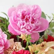 A10MD1915【CNFlower x 珠寶盒法式點心坊 】甜蜜生活- 牡丹款 蛋糕花禮 4500-4