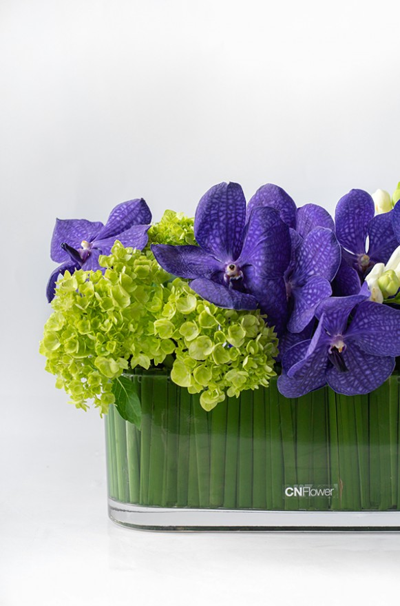 A02GLLL15 _紫萬代盆花_3500(3)