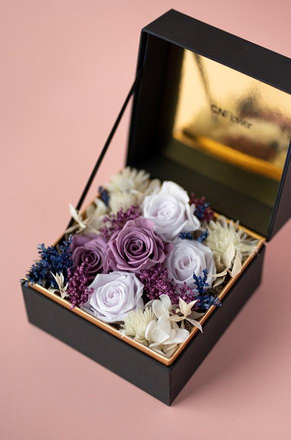 C0100190793珠寶盒花園- 情迷 恆星花(紫)-2