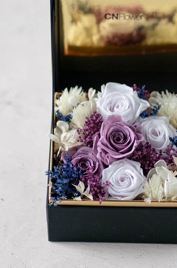 C0100190793珠寶盒花園- 情迷 恆星花(紫)-5