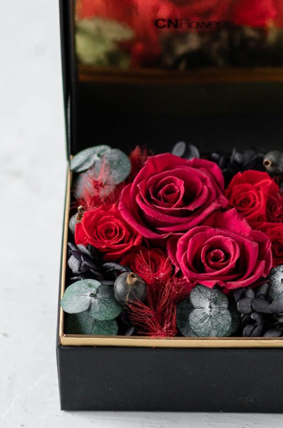 C0100190795珠寶盒花園- 情迷 恆星花 (紅)3800-4