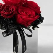 C0101190801_ 甜美驚喜 恆星盆花 紅紫_4500(3)