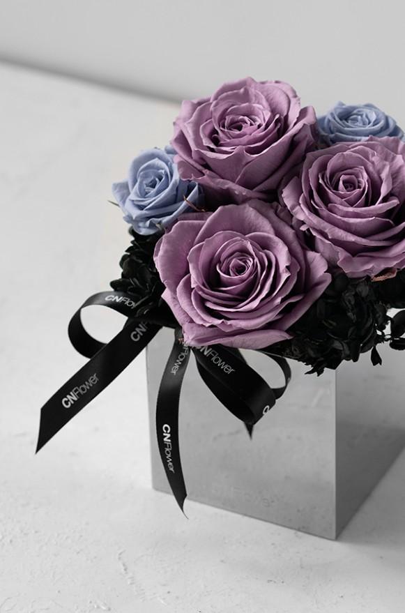C0101190802_甜美驚喜 恆星盆花 紫_4500(2)