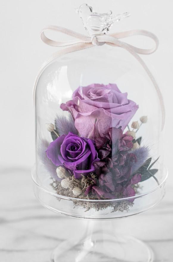 C0102190703_甜蜜星空-紫 _1880(3)