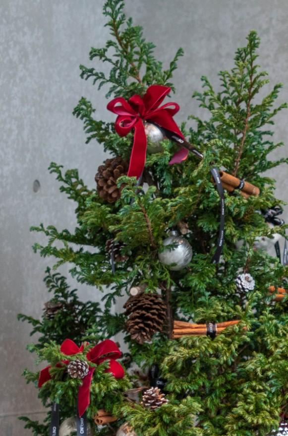 B0102191121_ 藍柏森林 聖誕小樹_7800(2)