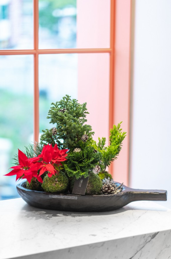 B0102191122_溫馨聖誕 木盤植栽_2500(1)