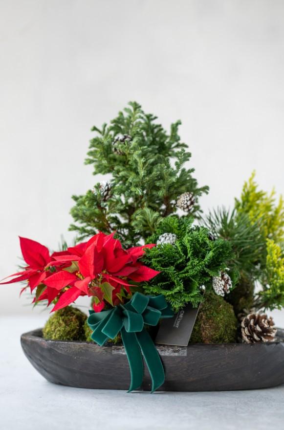 B0102191122_溫馨聖誕 木盤植栽_2500(3)