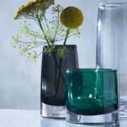 stems-mini-vase-clear-h10cm-glass-lsa-international-g924-10-301-6-2