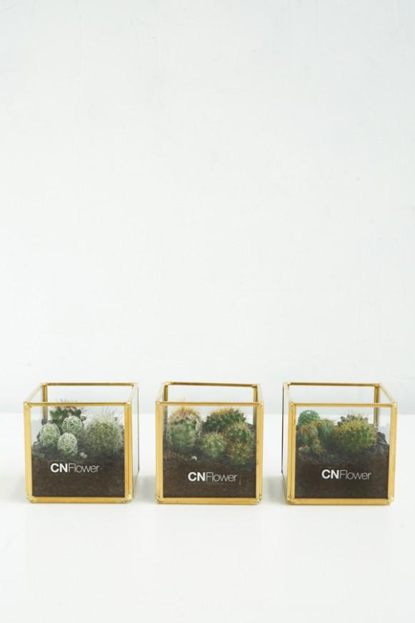 B0102200608 _仙人掌綠寶石 方形金邊花器 (二入組三入組)_ 1380 (7)